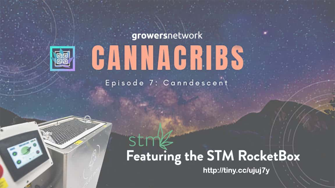 CannaCribs features the STM RocketBox Joint Packing Machine