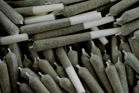 Selecting the Right Paper for Your Pre-Rolled Cones