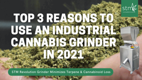 Top 3 Reasons to Use Industrial Cannabis Grinder [2021]